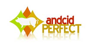 Andcid Perfect